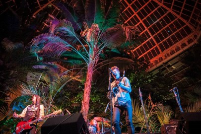 The Palm House will host LIMF celebrations