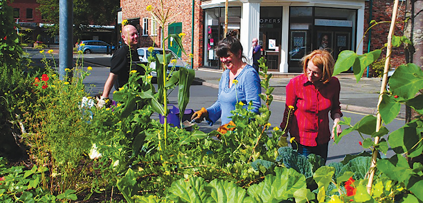 Growing in Liverpool: Top tips and community projects