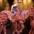 Interview: 'War Horse' playwright Nick Stafford talks to Your Move ahead of Liverpool shows