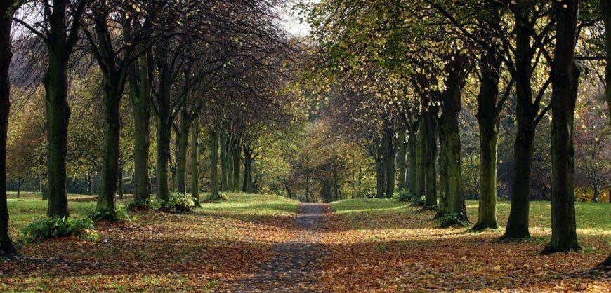 park, Sefton Park, parks, Green Flag, Green Heritage