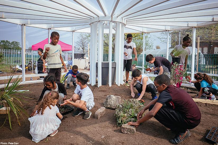 Liverpool outdoor arts & entertainment - Resilience Garden