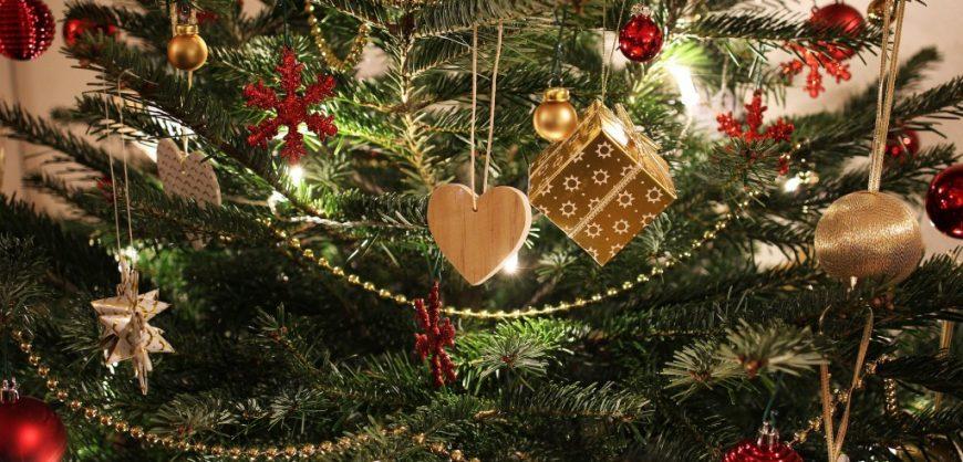 recycle, Christmas tree