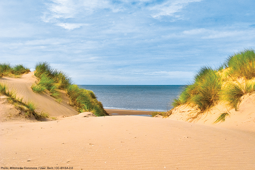Seaside resorts near Liverpool - Formby